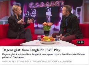 SVT 29 jan 2014